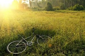 VTT, Vélo Tout Terrain en Lozère, Cévennes